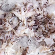 Ciuffi di Calamaro decongelato